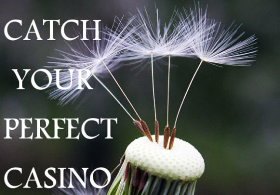 Your Perfect Online Casino